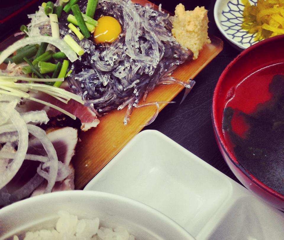 ゆうき食堂、生しらす&ビンチョウ炙り!