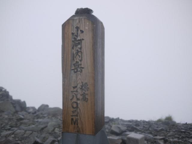 P1280628 (640x480)