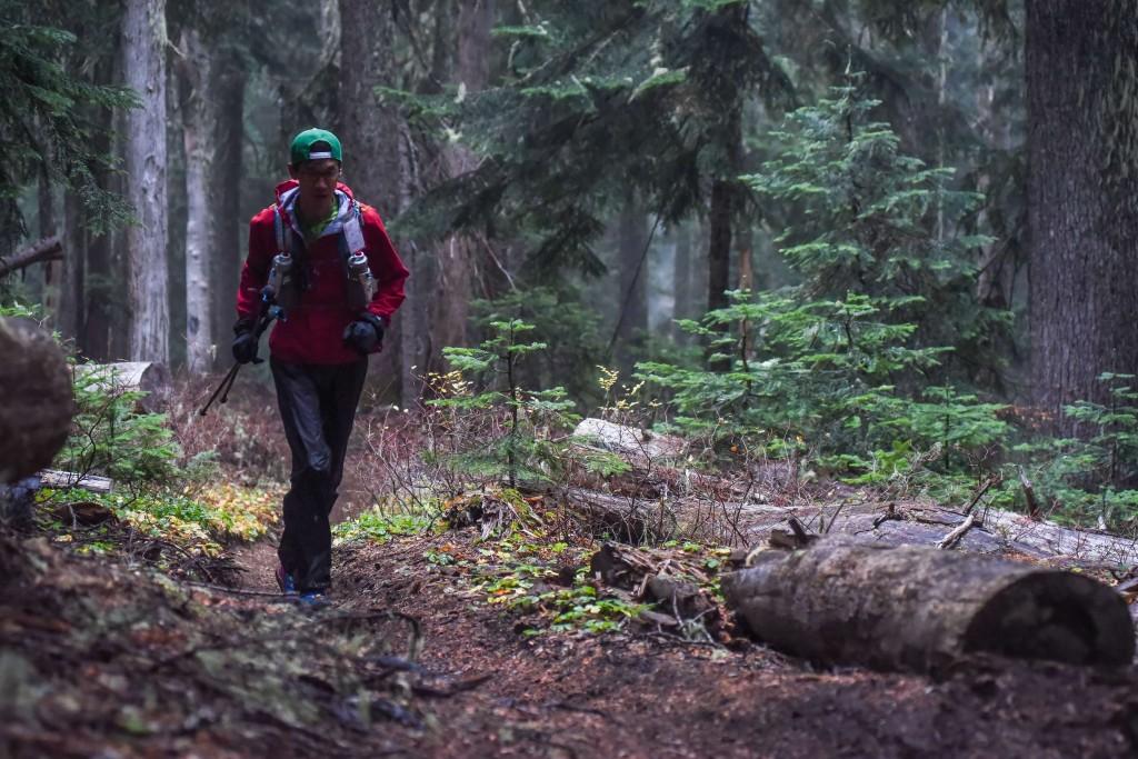 序盤、樹齢の大きい樹林帯を走る