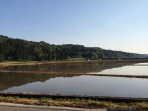 田植え前の水田の写り込みが美しい
