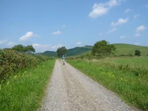 モアン山の下山後の林道