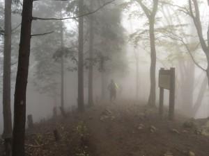 標高1,,356mまで上がりますが稜線は霧が凄く幻想的でした