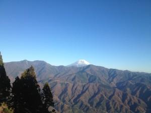 富士山が!右手前にはUTMFでおなじみの天子山地が・・・