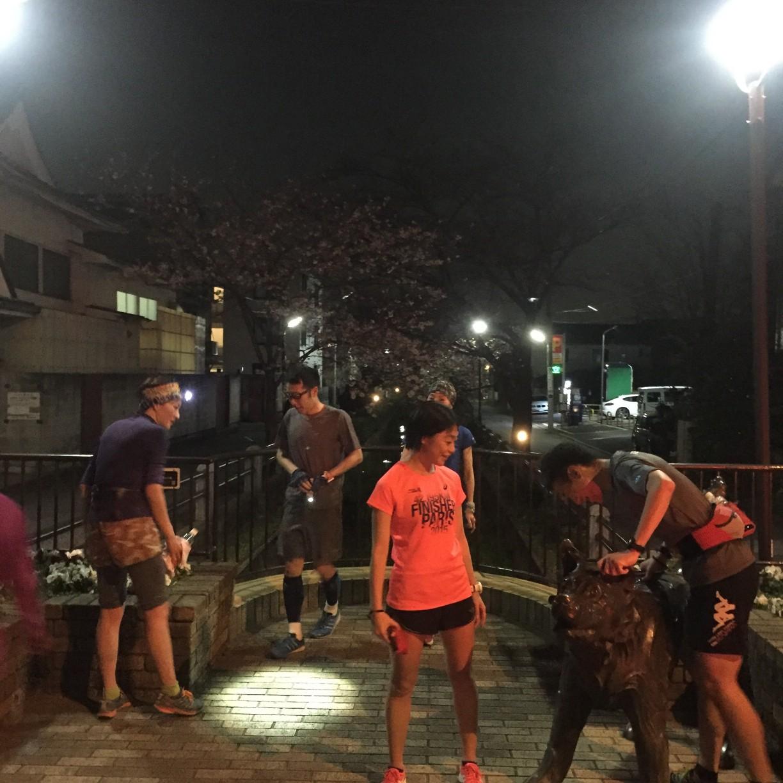 犬がいました 最後は「自由走行」という1kmくらいのダッシュ大会です