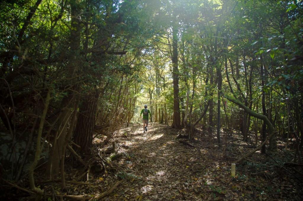 修験道トレイル in 上毛町のコースである九州自然歩道(村上智一さん撮影)