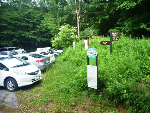 13.4km地点のみどり池入口。バス停右手からシャクナゲ尾根への登山道に入る。