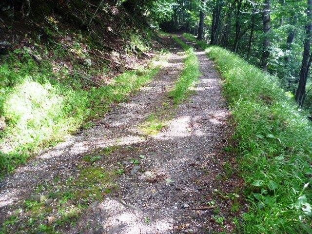 13.8km地点。一旦林道へ。右へ。
