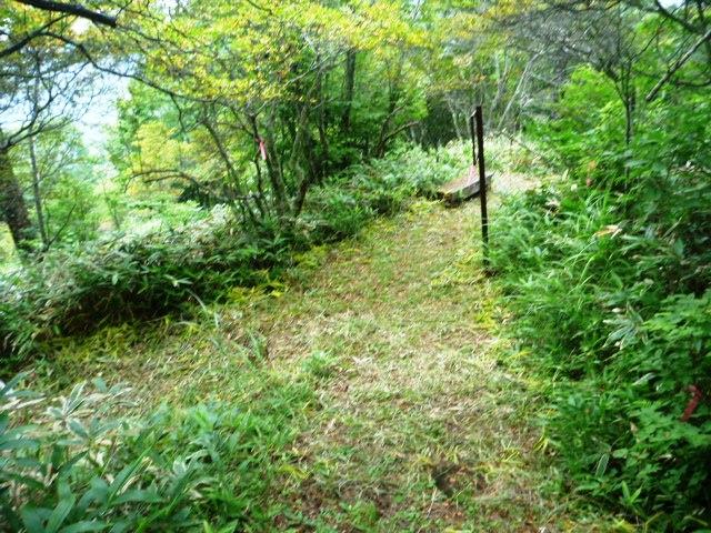 19.4km地点。小海町の町花サラサドウダンツツジの群生地。県の天然記念物。6月中旬から7月上旬が見頃らしい。きれいに整備されている。いくつか分岐があるが少しうろ覚えで遠回りしたかもしれない。基本下りを選べば間違いない。