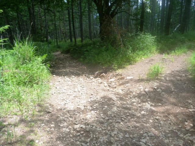 27.7km地点。分岐を左へ。往路は右からきた。