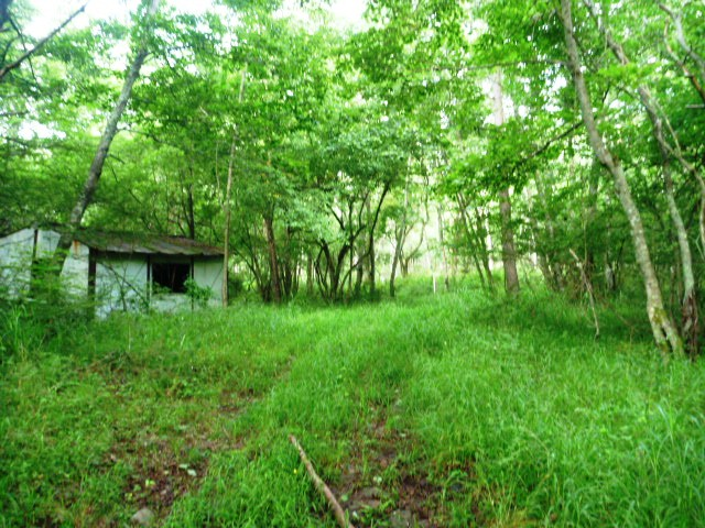 5.5km地点。プレハブ小屋の先に分岐あるがまっすぐ行くこと。