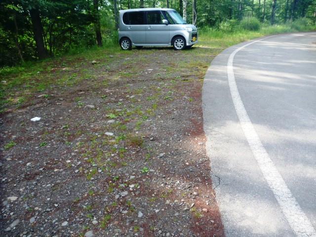 8.0km地点。林道から八ヶ岳林道と呼ばれる舗装路へ出る。出た所は本沢温泉入口駐車場となっており、隅の方に最初のエイドが設置される。舗装路は稲子湯方面へ下る。
